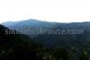 Panglakha forest near Padamchen