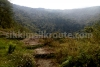 Trail of Premlakha forest trek