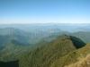 Thambi view